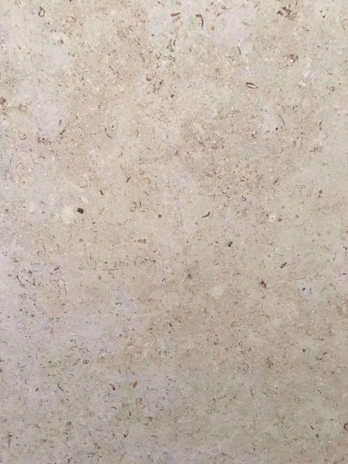 Beige Color Sinai Pearl Polished Marble