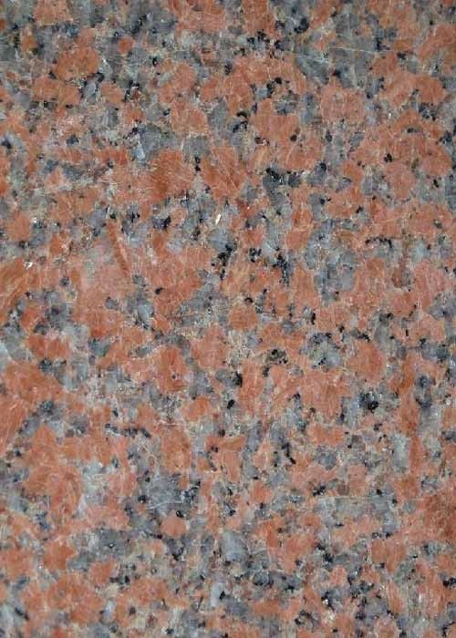 G562 Maple Red Granite Stone Slab Flooring Tile Polished Flamed Bushhammered