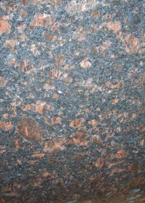 China Tan Brown Granite Stone Floor Tiles Big Slabs Countertop Skirting Pillar factory
